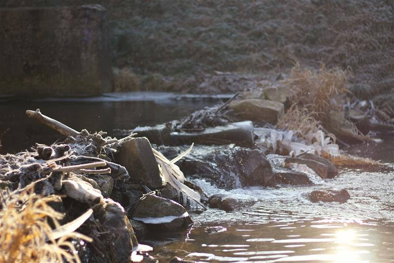 Creek in winter with frozen stones