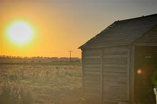 Horse stable at sunset