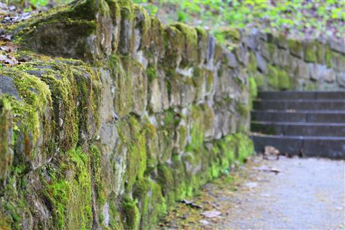 Stone wall covered with moss
