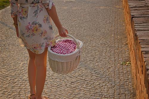 Woman in a dress carrying picnic basket